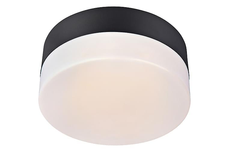 Deman Plafond Lampe IP44