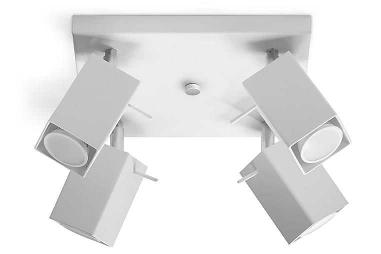 Merida Spotlight med 4 lamper Hvid - Sollux Lighting - Belysning - Lamper - Loftlampe