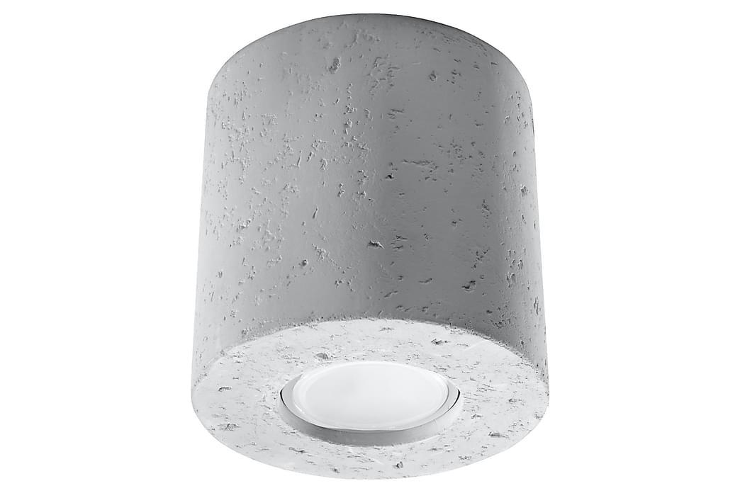Orbis Spotlight Betongrå - Sollux Lighting - Belysning - Lamper - Spotlights & downlights