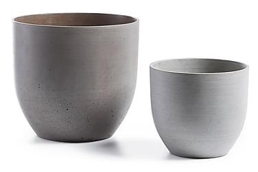 LOWY Vaser