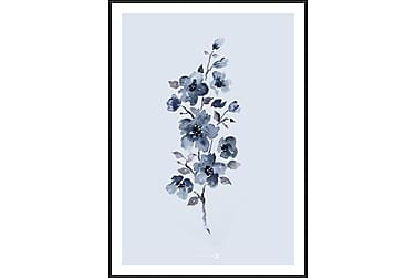 Floral Blue Billede