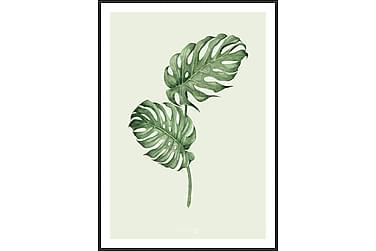 Leaf green Billede