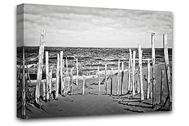 Beach B&W Billede Lærred