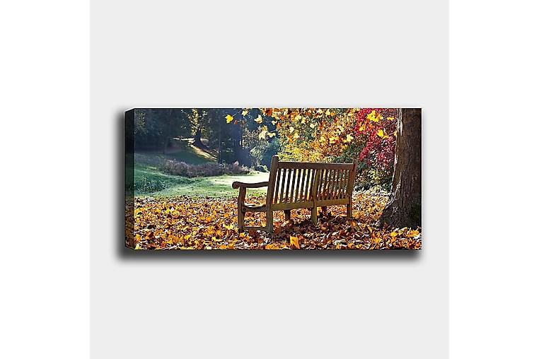 Canvasbillede YTY Landscape & Nature Flerfarvet - 120x50 cm - Boligtilbehør - Vægdekoration - Billeder på lærred