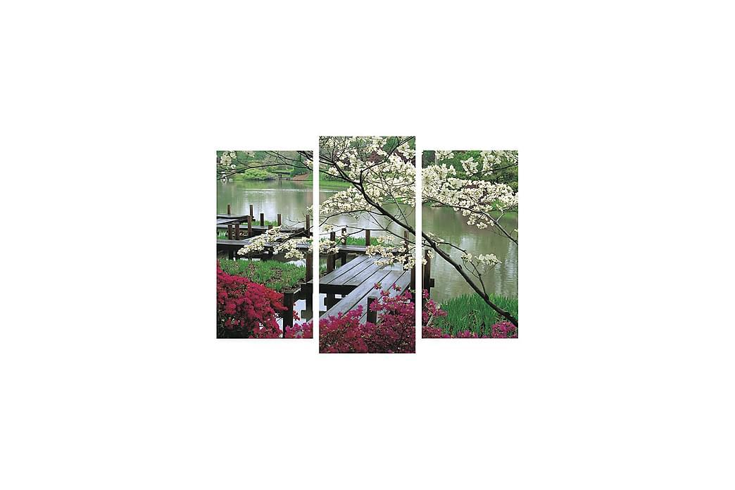 Dekorativt Canvas Maleri 3 Dele - Flerfarvet - Boligtilbehør - Vægdekoration - Billeder på lærred