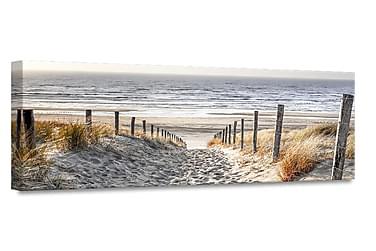 Warm Sand Billede Canvas