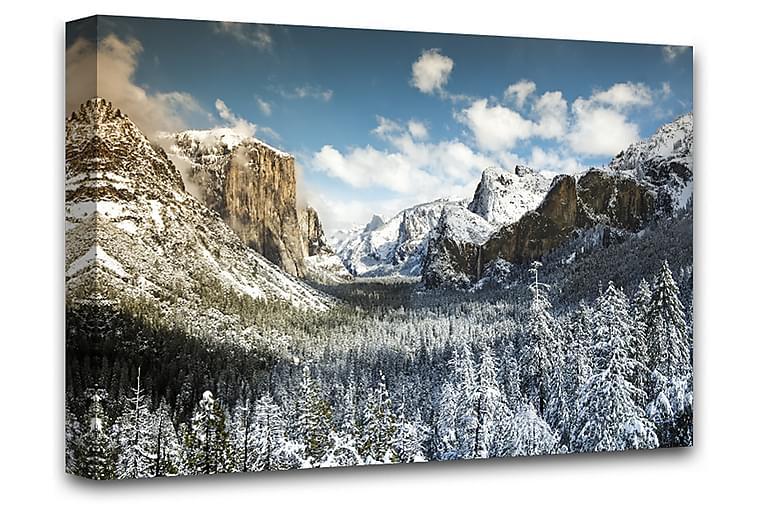 Yosemite Valley Billede Lærred