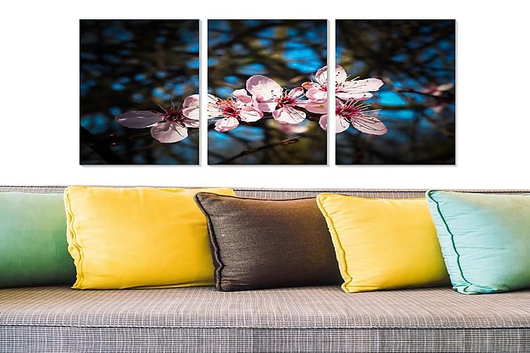 Fototapet Abstrakt 3 stk Flerfarvet - 22x05 cm - Boligtilbehør - Vægdekoration - Posters & plakater