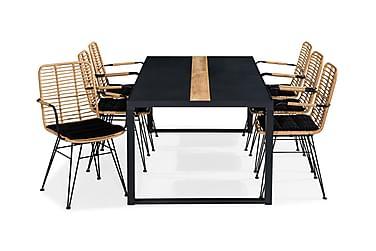Bastian Spisebordssæt 200x100 + 6 Malaga Stol m. Hynde
