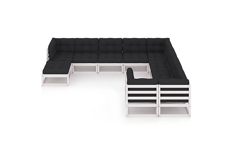 loungesæt til haven 10 dele med hynder massivt fyrretræ hvid - Hvid - Havemøbler - Loungemøbler - Loungesæt