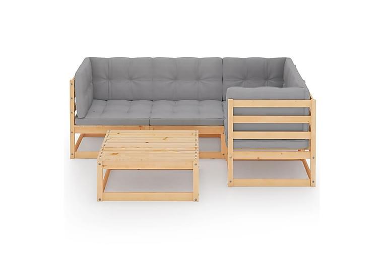 loungesæt til haven 5 dele med hynder massivt fyrretræ - Brun - Havemøbler - Loungemøbler - Loungesæt