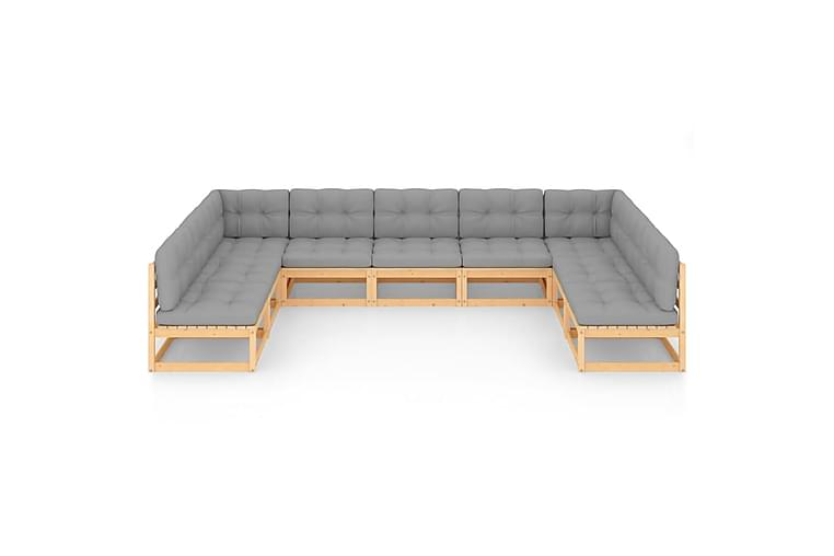 loungesæt til haven 9 dele med hynder massivt fyrretræ - Brun - Havemøbler - Loungemøbler - Loungesæt