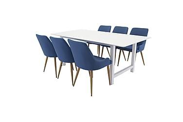 Naomi Spisebordssæt med 6 Pelle Stole